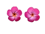 Jennibeans mini fuchsia Plumeria Earrings