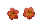 Jennibeans mini orange Plumeria Earrings