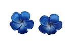 Jennibeans mini royal blue Plumeria Earrings