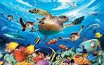 Puzzle - Journey of the Sea Turtles