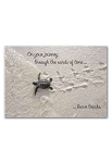 Greeting Card Turtle Congratulations
