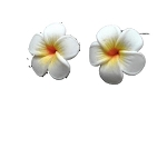 Jennibeans mini yellow Plumeria Earrings