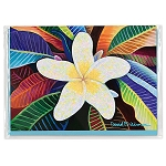 Greeting Card Plumeria